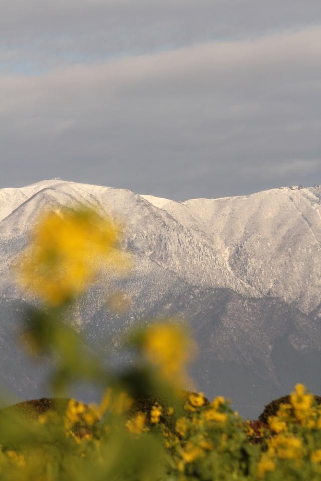 the snow mountain