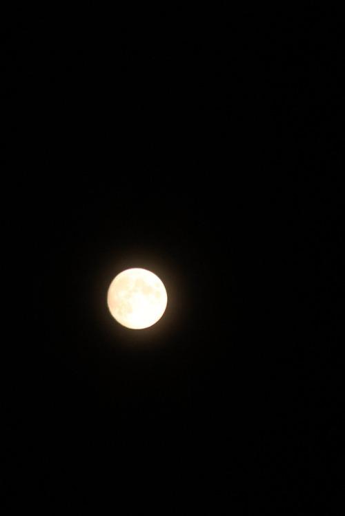 Moon_007