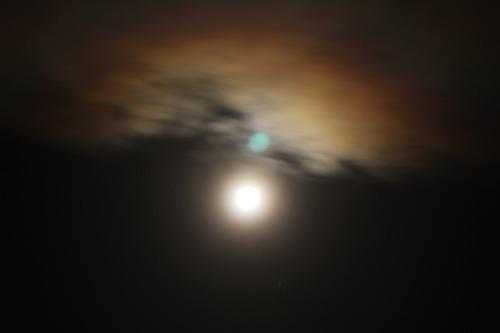 Early_morning_moon_019